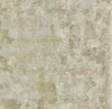 GRUNGE GREY LAPPATO 446,3*894,6