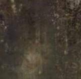 GRUNGE OXIDUM LAPPATO 446,3*894,6