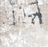 ALCHIMIA INSERTO 200*600