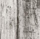 BLACKWOOD 185*598