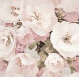 SAKURA INSERTO FLOWER декор 300*450