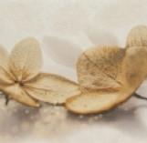 DEC SAMANTA FLOWER декор 250*400